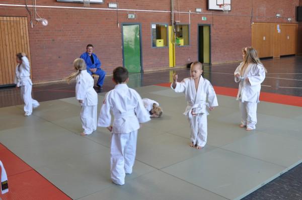 Judo - Bild 006