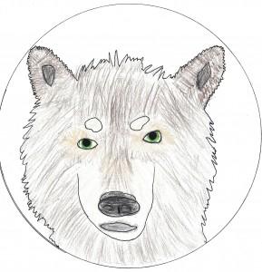 Wolfsklasse_Bild2